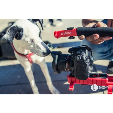 Gloxy Movie Maker stabilizer for Canon XC10